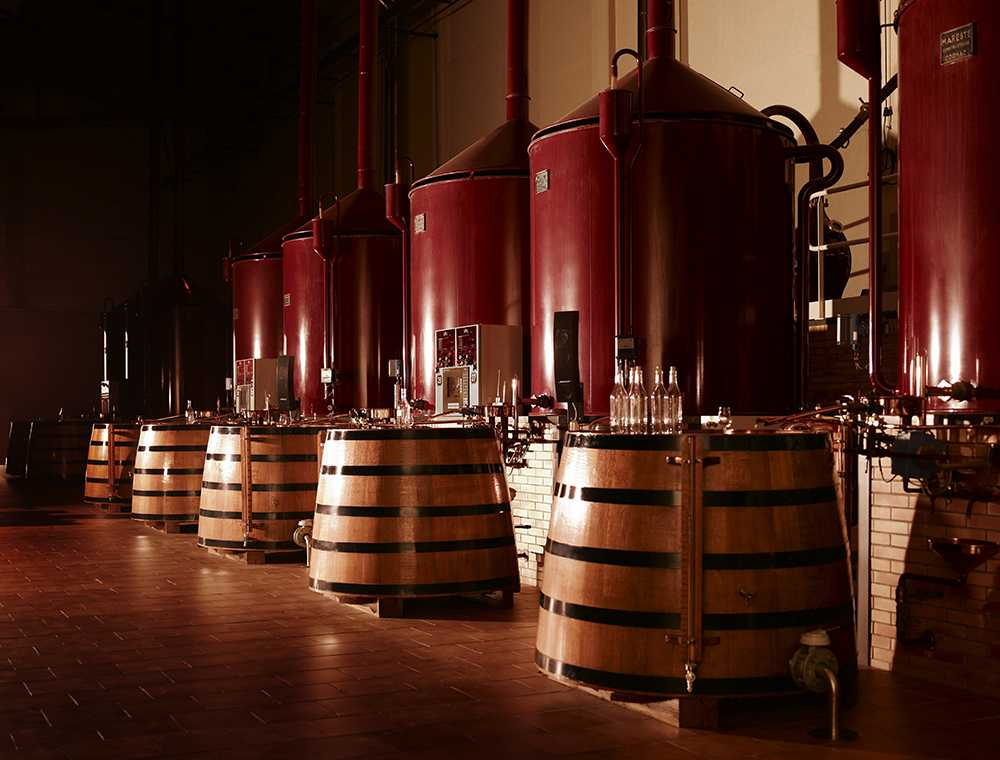 Why Cognac is not Brandy