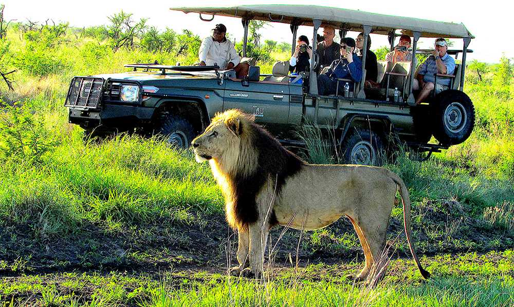 Lifestyle: A magical winter safari beckons at Tau Game Lodge